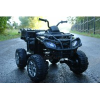 Детский квадроцикл Grizzly Next 4WD с пультом управления 2.4G - BDM0909