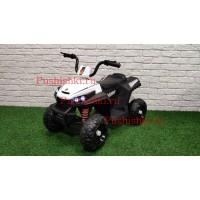 Детский квадроцикл  RiverToys T111TT
